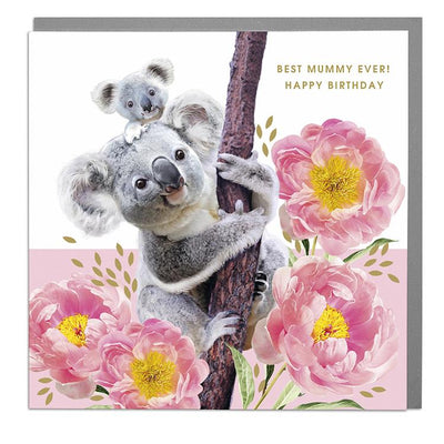 Koalas Best Mummy Birthday Card - Lola Design Ltd