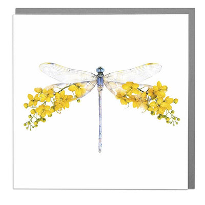 Dragonfly Card - Lola Design Ltd