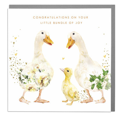 Ducks Congratulations On Your Little Bundle New Baby Card - Lola Design Ltd