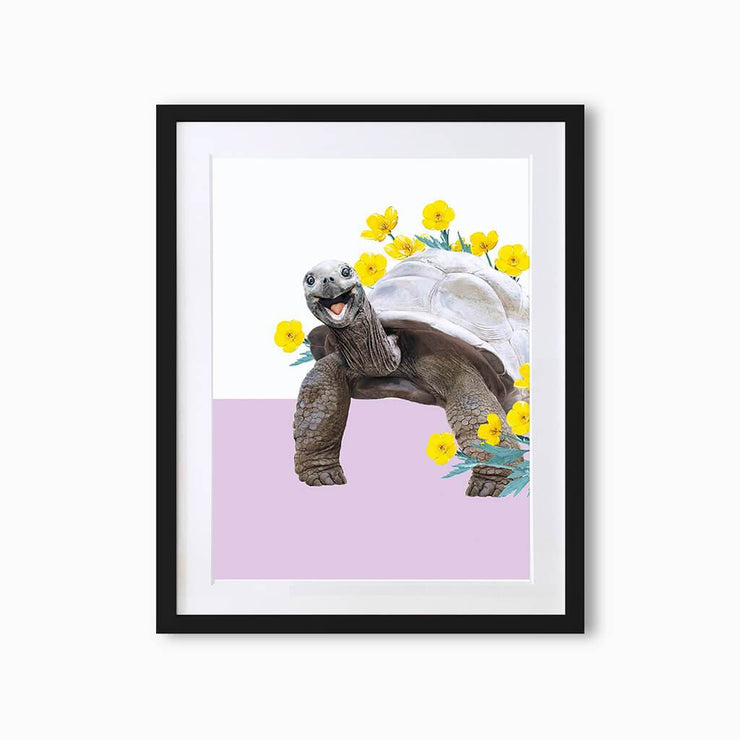 Turtle Art Print - Lola Design Ltd