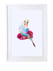 Budgie Art Print - Lola Design Ltd