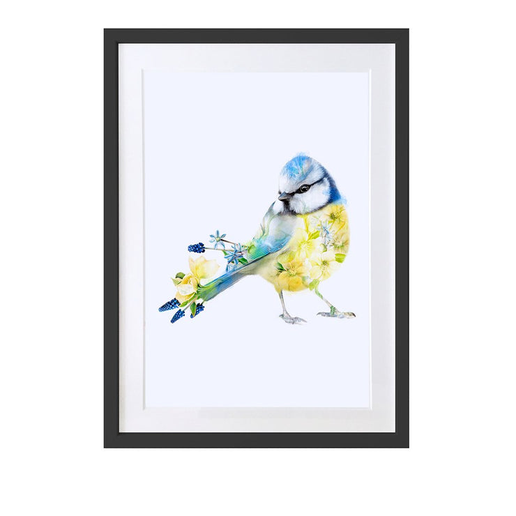 Blue tit Art Print - Lola Design Ltd