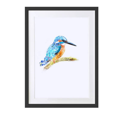 Kingfisher Art Print - Lola Design Ltd
