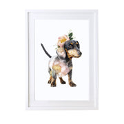 Dachshund Art Print - Lola Design Ltd