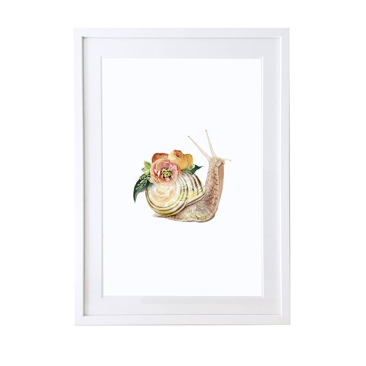 Snail Art Print - Lola Design Ltd