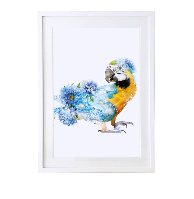 Parrot Art Print - Lola Design Ltd