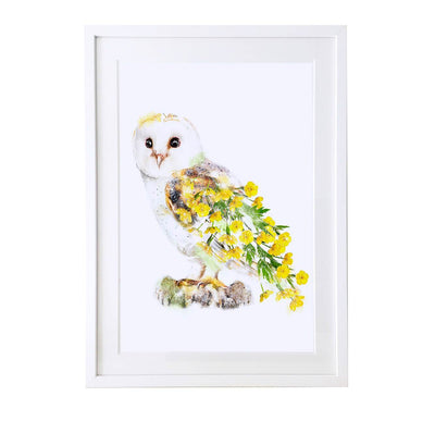 Owl Art Print - Lola Design Ltd