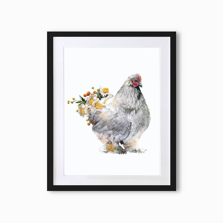 Brahma Hen Art Print - Lola Design Ltd