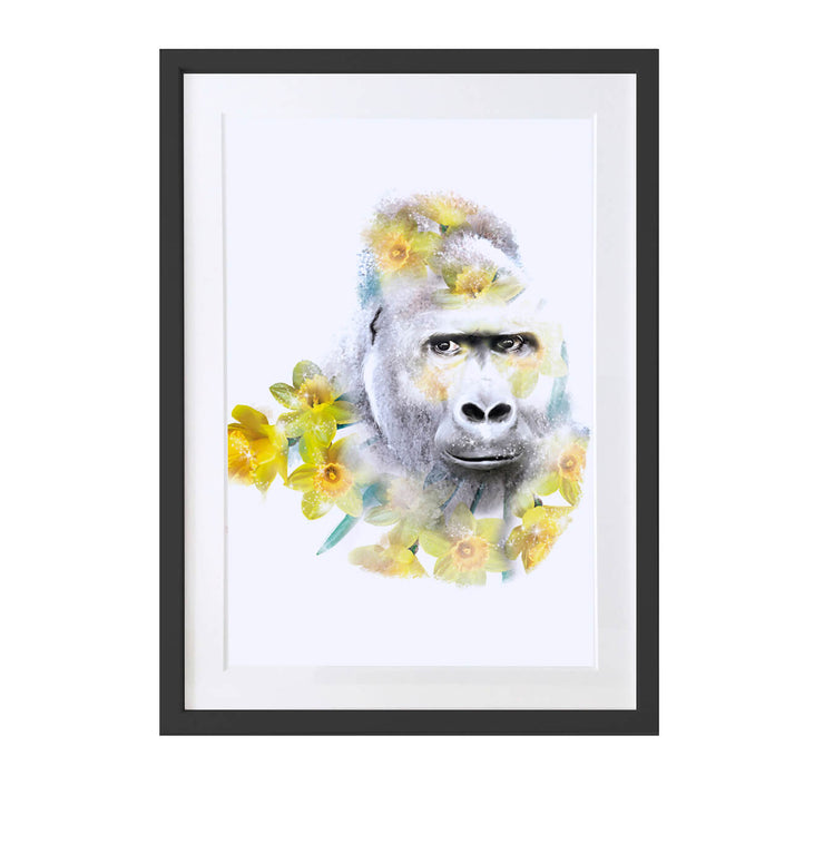 Gorilla Art Print - Lola Design Ltd