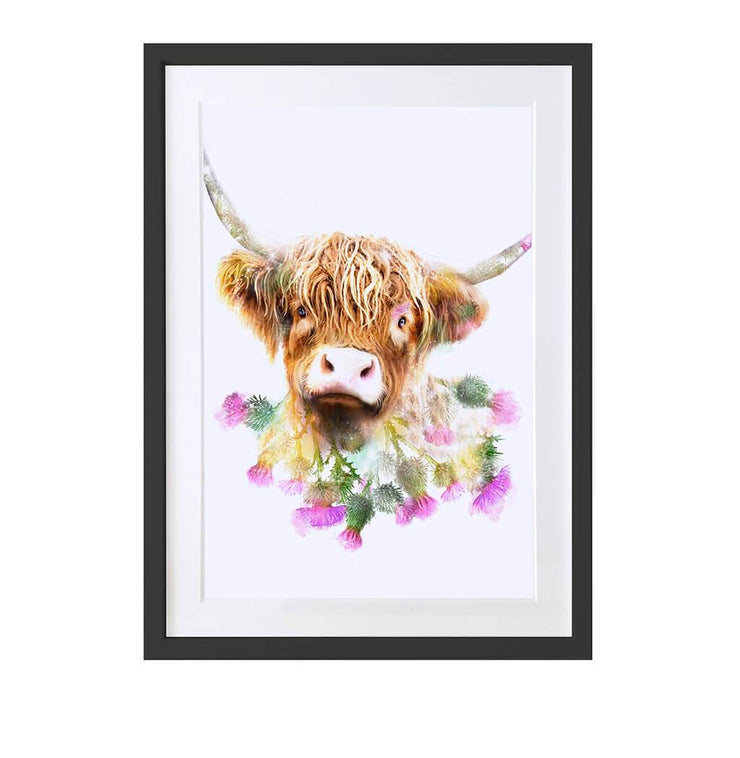 Highland Cow Art Print - Lola Design Ltd