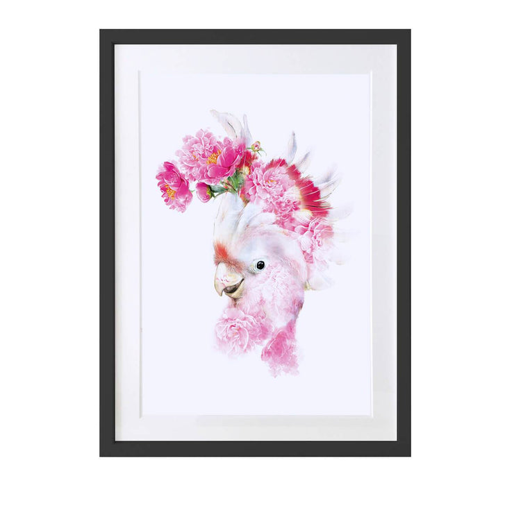 Cockatoo Art Print - Lola Design Ltd
