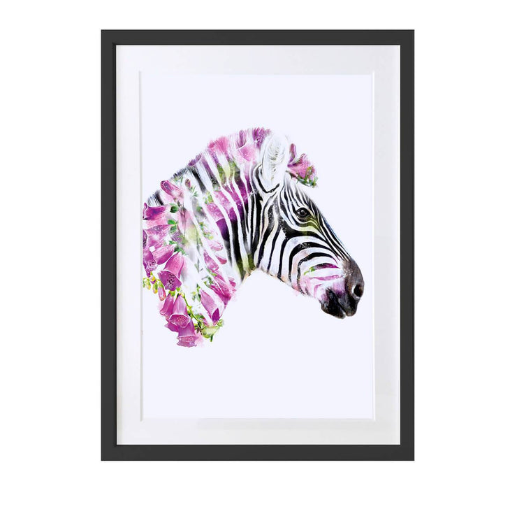 Zebra Art Print - Lola Design Ltd