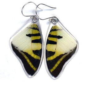 Five Bar Swallowtail Butterfly Earrings
