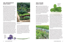 Load image into Gallery viewer, The Essential Aromatherapy Garden: Growing and Using Scented Plants and Herbs by Julia Lawless