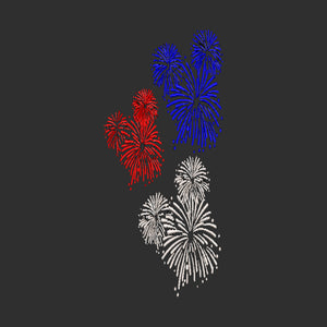 Disney Park Fireworks 4th of July Independence Day inspired Machine Embroidery Design,  7 Sizes   All machine Types