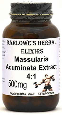 Massularia Acuminata Extract 4:1-60 500mg VegiCaps - Stearate Free, Bottled in Glass! Free Shipping on Orders Over $49!