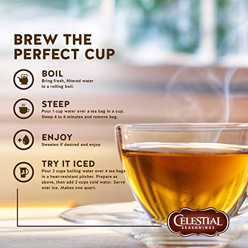 Celestial Seasonings Cinnamon Apple Spice Caffeine Free Herbal Tea 20 ct (Pack of 6)