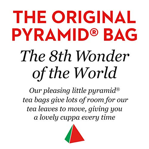 PG Tips Black Tea, Pyramid Tea Bags, 240-Count Box (Pack of 2)