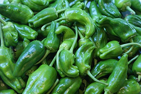 Pimientos DE Padron- 40 Seeds (Padron Pepper)- Hot/Sweet/Mild,Spanish Heirloom