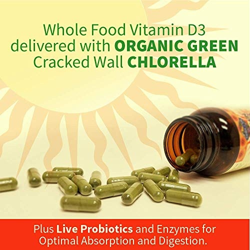 Garden of Life Raw D3 Supplement - Vitamin Code Whole Food Vitamin D3 5000 IU, Dairy and Gluten Free, Vegetarian, 60 Count Capsules | Color May Vary - Now with Organic Green Cracked Wall Chlorella