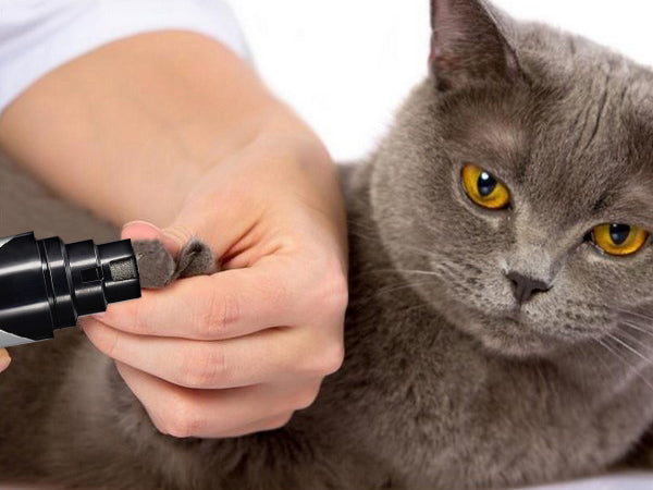 Does our nail grinder also work for cats?