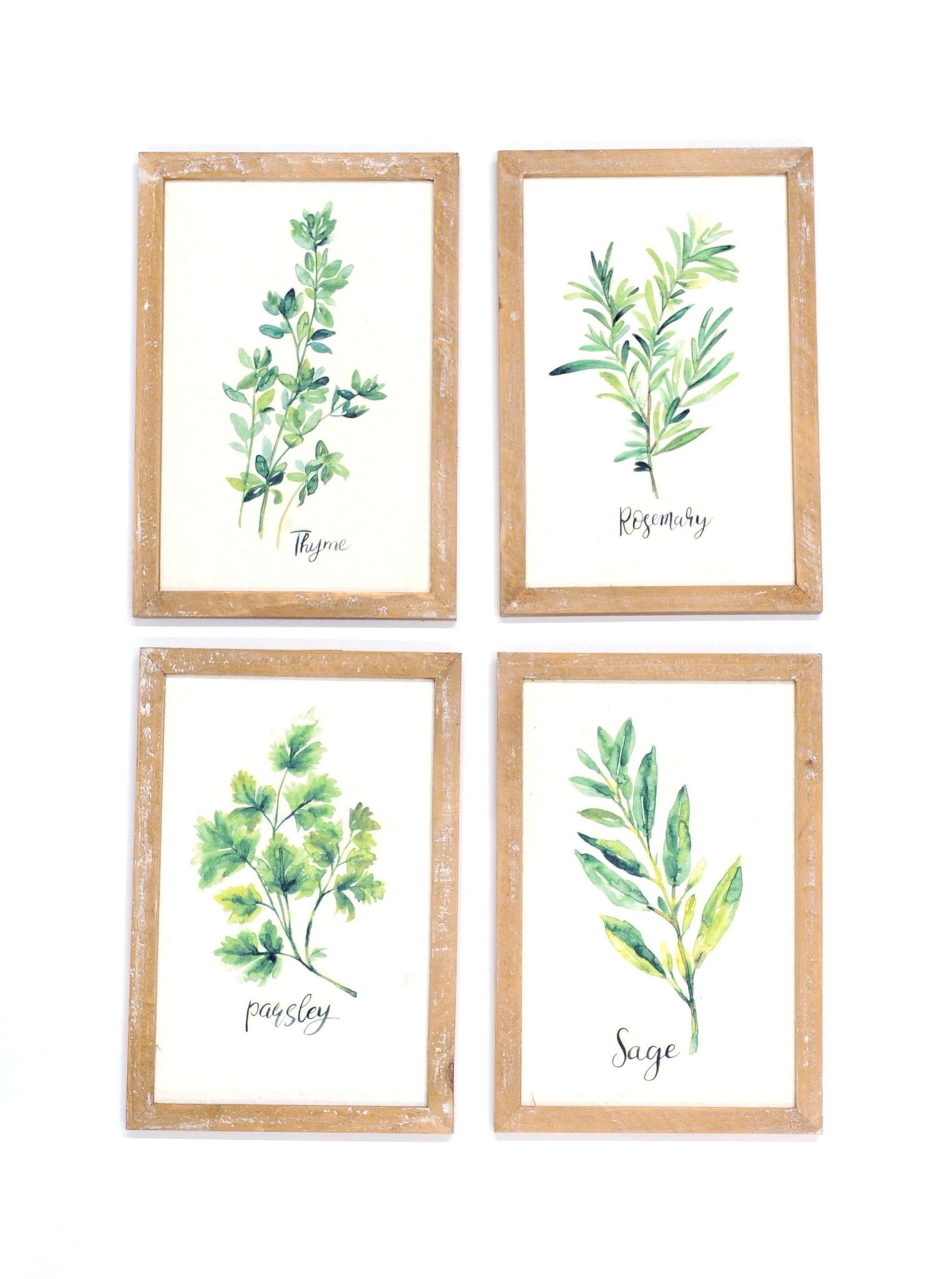 Rosemary, Parsley, Thyme, and Oregano Wall Signs