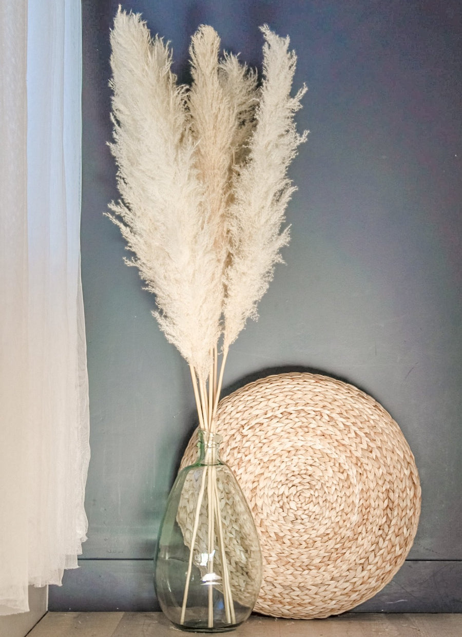 Hirsch & Timber Pampas Grass - Type 1