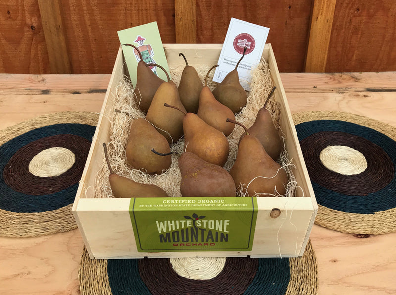 Holiday pear box