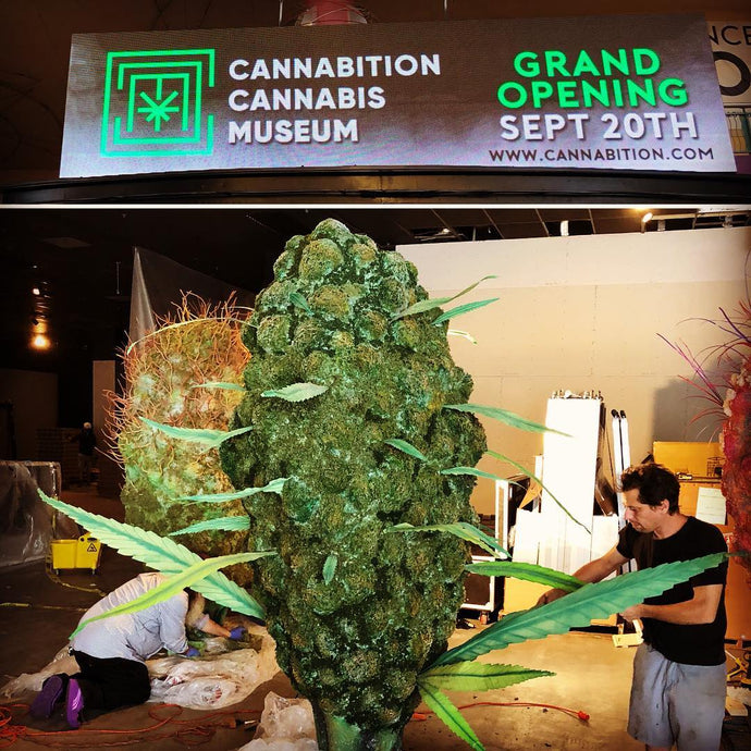 Cannabition Museum