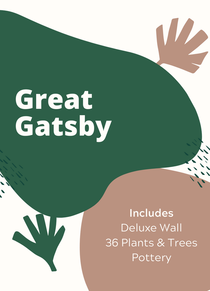Package - Great Gatsby