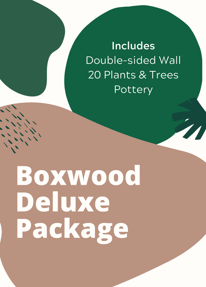 Package - Boxwood Deluxe