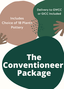 Package - Custom Conventioneer