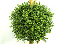 Load image into Gallery viewer, Boxwood Ball Three-Ball Topiary