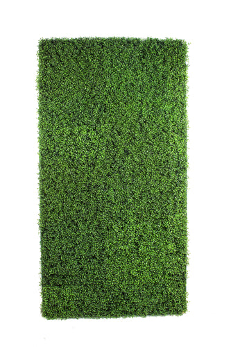 Boxwood Panels or Walls