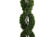 Load image into Gallery viewer, Double Spiral Evergreen Topiary