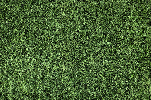 Artificial Turf - Athletic