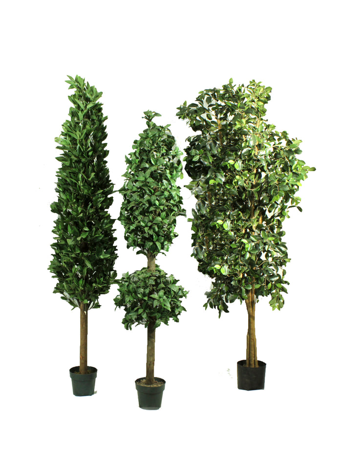 Assorted 6' Artificial Trees