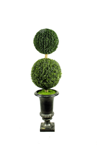 Boxwood Ball Two-Ball Topiary