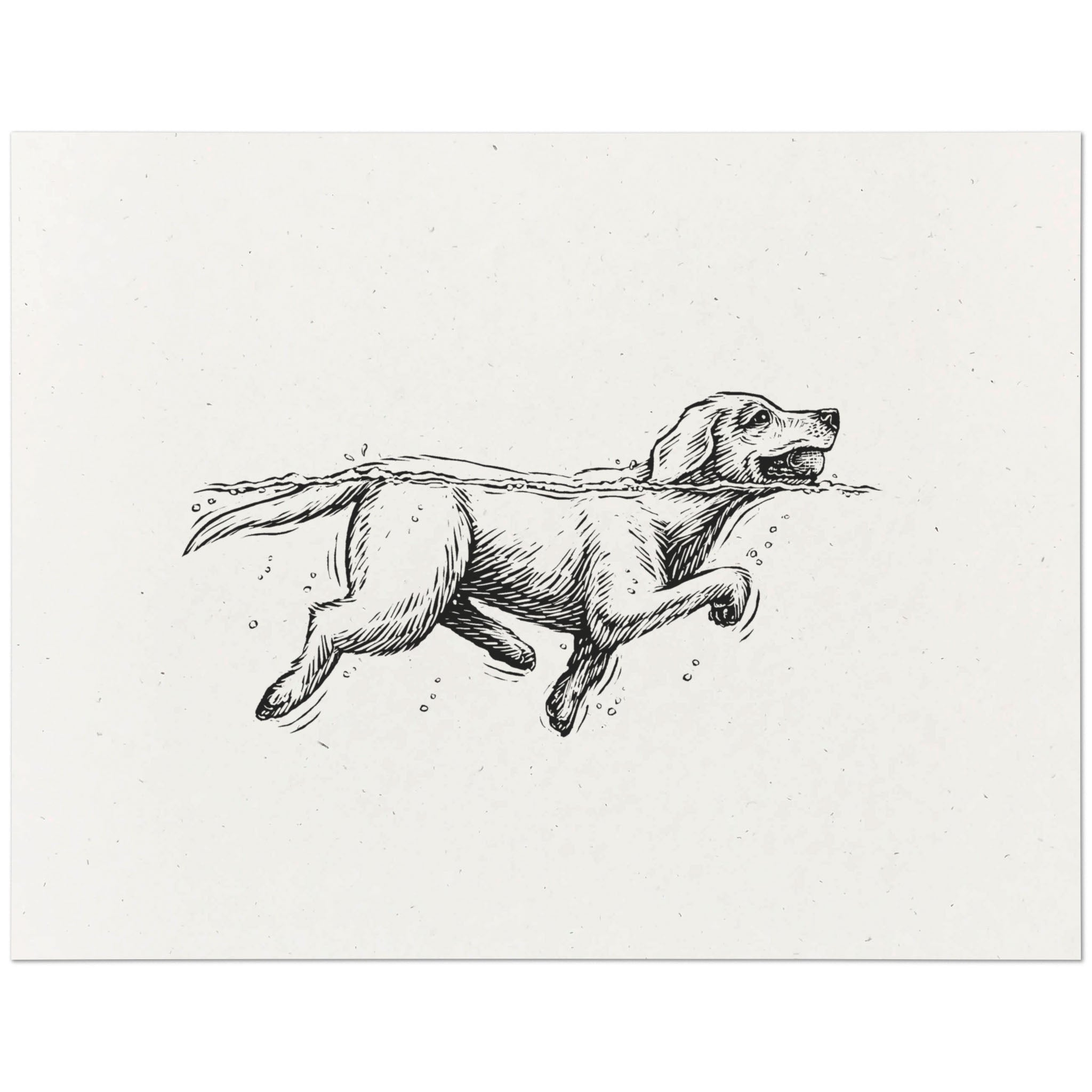 Labrador Retriever Print
