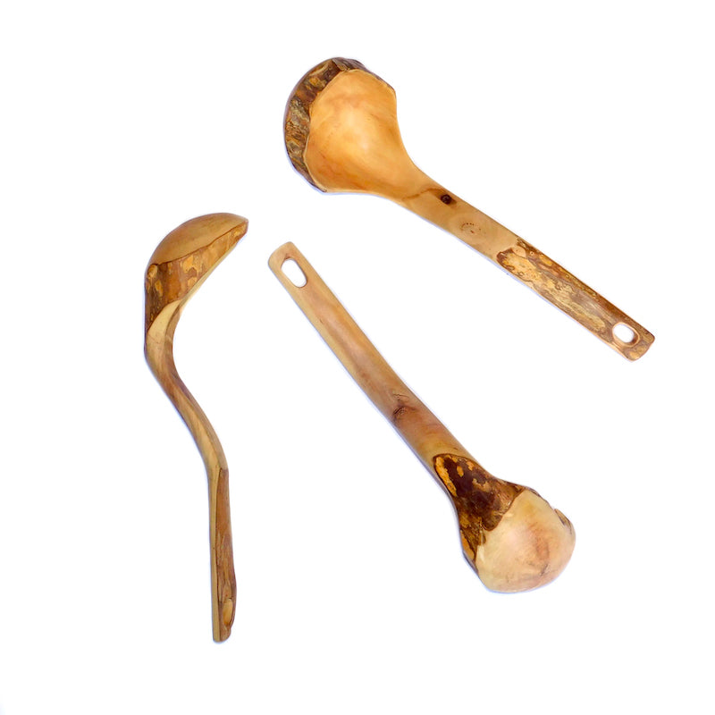 Large Coffee Root Spoon