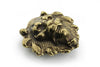 Aged gold lion head buckle 40mm