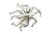 Bleached Gold Cute Octopus Buckle 40mm