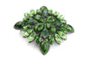 Mixed Green Toned Swarovski Crystal Buckle 40mm