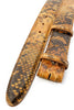 Caramel fudge genuine python belt strap