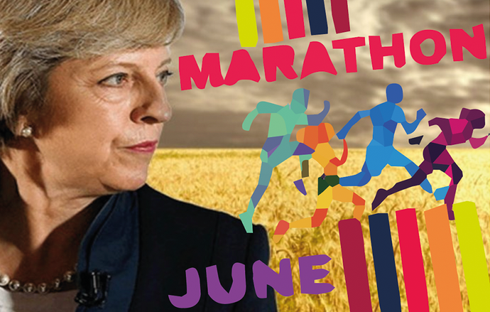 Theresa's Wheat Dream