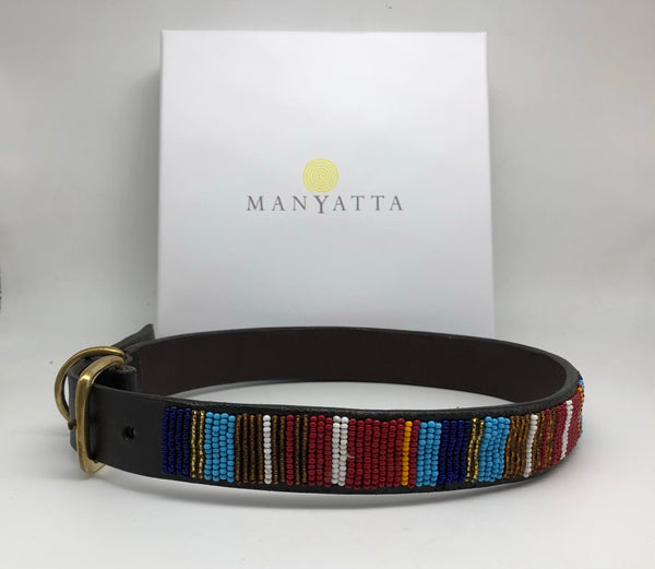 Multi-coloured collar (19'' - 23'' only)