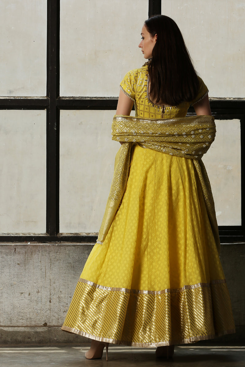 Lemo Yellow Lehenga - Set Of 3