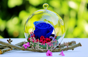 Boule Eternal Blue Rose
