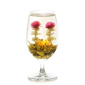 Most Beautiful Blooming Tea