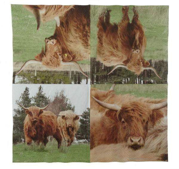 Highland Cow Napkin (Pack of 20)